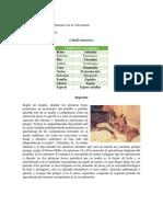 Impronta en El Equus Caballus - Mateo Berrio Soto