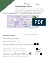 Pedigree Intro Practice