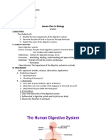 Detailed Lesson Plan Digestive System