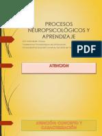 Procesos Neuropsicológicos y Aprendizaje u3 2017