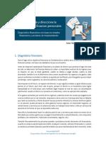 Diagnostico Financiero Presupuesto Acciones de Mejoramiento