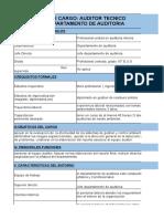 Perfil de Cargo Auditor Interno