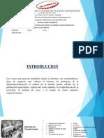 Tipos de Industrias Que Utilizan El Sistema de Costos Por Procesos INTRODUCCION de COSTO II