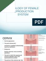 Patologi Anatomi Femal Reproduction System.pptx