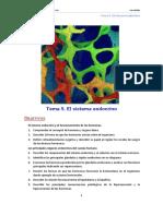 Anat 09 Endocrino Tema