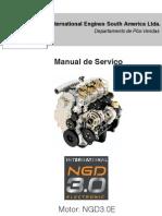 Manual de Serviço NGD3.0E 21.10
