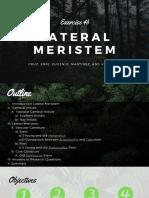 Lateral Meristem
