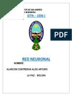 Red Neuronal 1036
