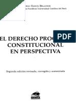 01 El Derecho Procesal Constitucional en Perspectiva (Garcia Belaunde)