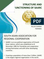 SAARC Presentation