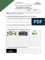 Guía  Microorganismos y Enfermedades 5basico (1).docx