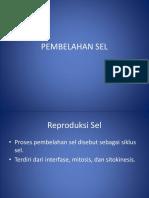 3.PEMBELAHAN SEL English.pptx