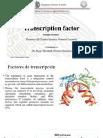factores de transcripcion ingles.pptx