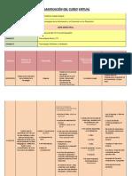 Planificación Del Curso Virtual