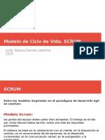 modelo ciclo de vida