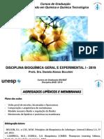 Agregados lipídicos e membranas BIOQUÍMICA QUÍMICA 2019-convertido.pdf