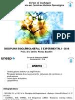 Lipídeos QUÍMICA 2019.pdf
