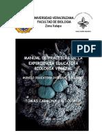 EXPERIENCIAS DE LABORATORIO-VEGETAL.pdf