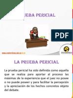 Diapositiva Prueba Pericial Ok