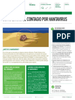 Ficha-Hanta ACHS.pdf