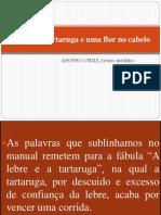 A Lebre, A Tartaruga e Uma Flor No Cabelo p. 86 (2)