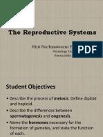 Sistem Reproduksi PP