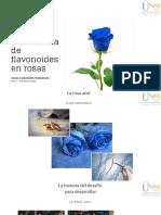 Ingeniería de La Vía Biosintética de Flavonoides en Rosas