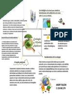 presentacionecologiaymedioambiente-161015151755