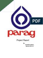 Sumukh Chandra Mishra Project Report