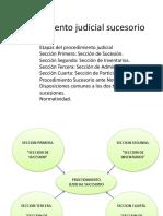 13 Procedimiento Judicial Sucesorio