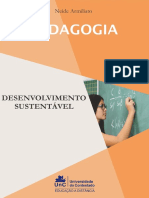 E-Book - Desenvolvimento Sustentável