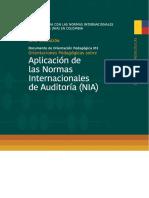 Aplicacion de Las Normas Internacionales de Auditoria