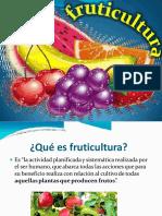 fruticultura----introduccion