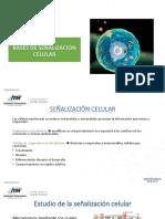 Bases de Señalización Celular