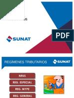 3. Regimenestributarios Sunat (1)