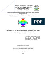 TESINA1 APROBADO.pdf