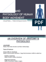 Chapter 1 - The Human Body