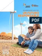 2012 Resumen Ejecutivo Espanol