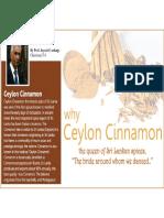 Presentation-Final.pdf