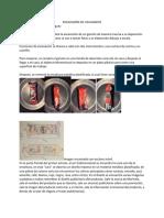 EXCAVASIÓN DE UN GANSITO pdf
