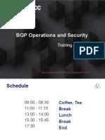 BGP Slides Single