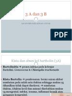 3 a Dan 3 B Anatomi Gyne