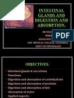 intestinalglandsanddigestion-180426101223.pdf
