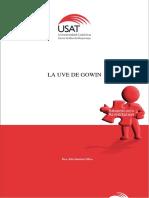 UVE DE GOWIN 2017-I