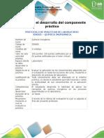 Protocolo para el desarrollo del componente práctico (16_04).docx