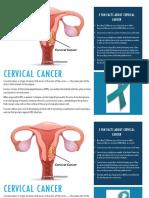 Cervical Cancer Page 1