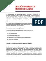 Resumen Convencion Derechos Niño 2