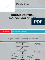 Lect 3 - 4 DOGMA CENTRAL-1.pptx