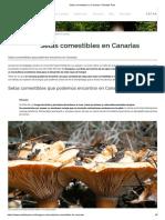 Setas Comestibles en Canarias