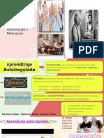 Motivación TN.pdf